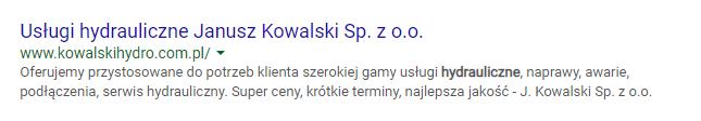 SERP hydraulik kowalski